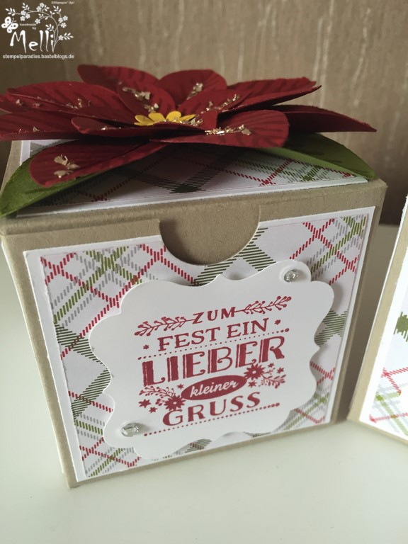 Stampin Up, Weihnachtsstern-Stanze, Box (2) (Kopie)