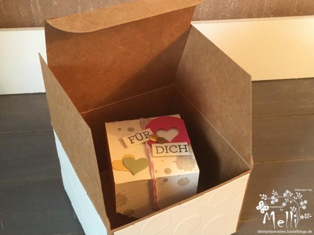 Stampin Up, Boxen, Goodie, Verpackung (10) (Kopie)